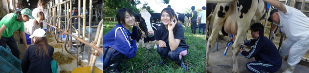 食農実践実習